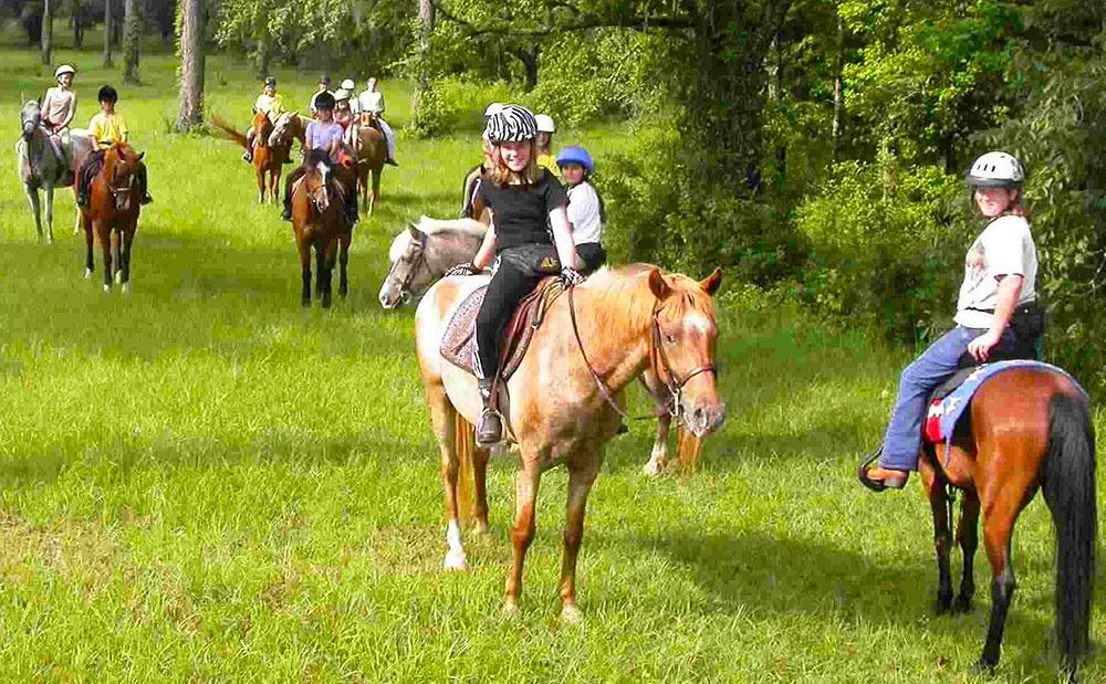 Scuola equitazione roma for Circolo bdr soggiorni estivi