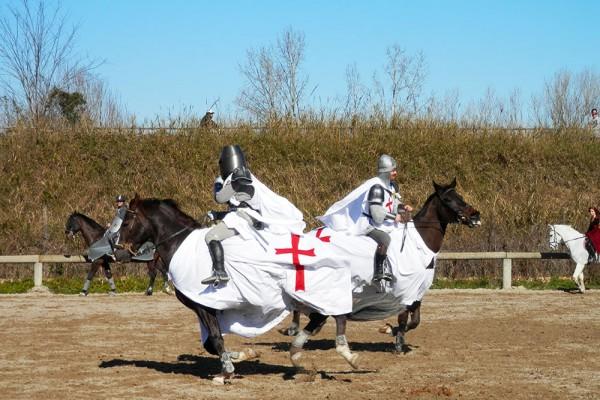 scuola-equitazione-roma-lezioni-salto-ostacoli
