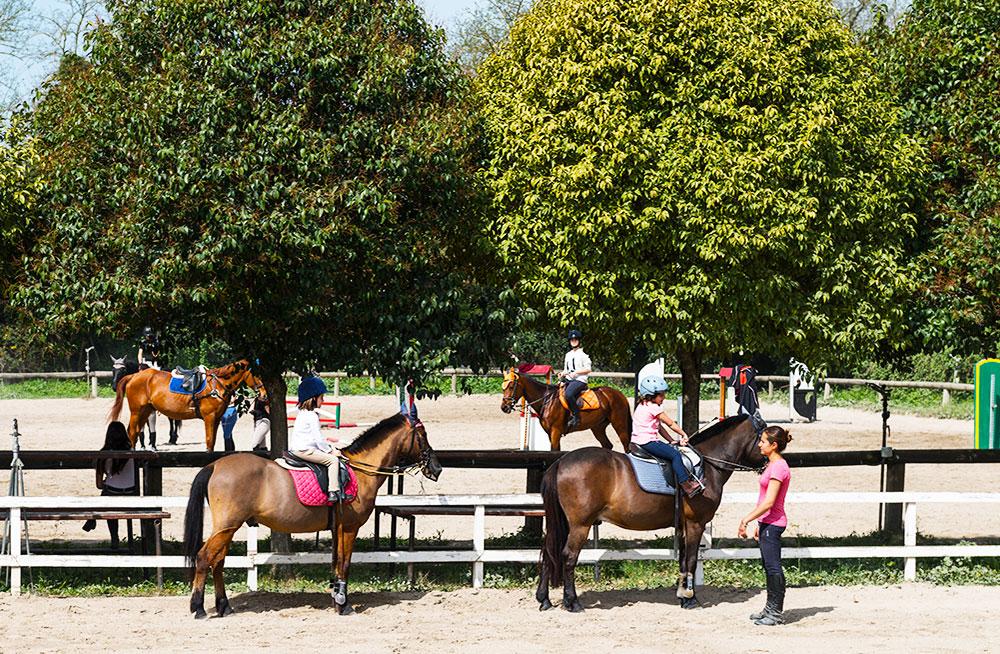 Nel Circolo Ippico Flaminio la prima Lezione di Equitazione è Gratuita
