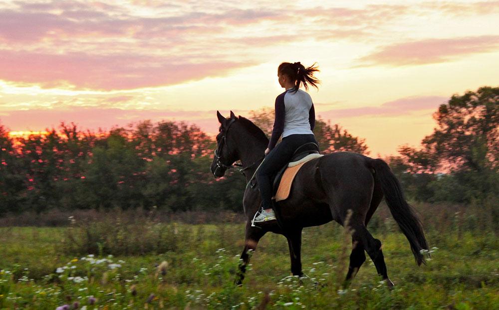 scuola-equitazione-roma-maneggio-zona-nord
